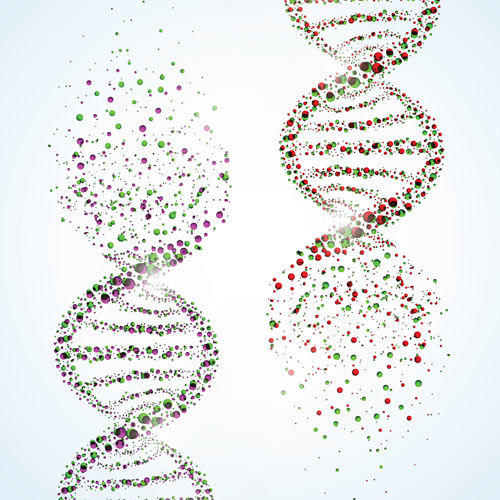 breast-cancer-genes