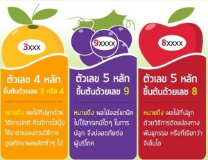 fruit_sticker